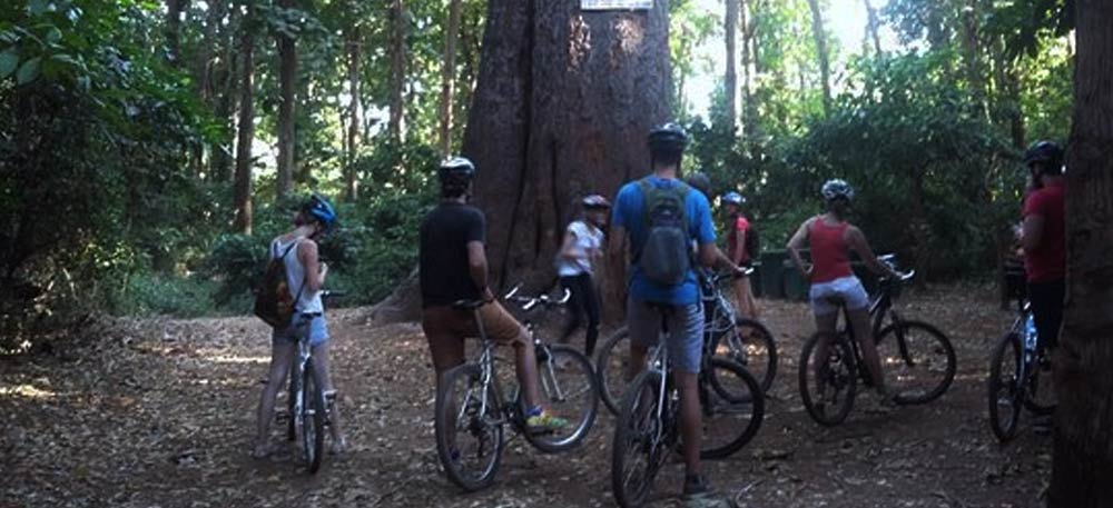 Day Tour Cycling at Rau Forest