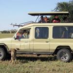 Type Of Vehicles